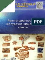 Lectie_Tubul_si_HBP_RUS.ppt