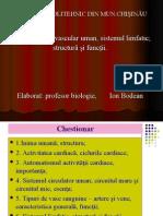 circulatia substantelor in organism