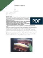 TERRINA.pdf