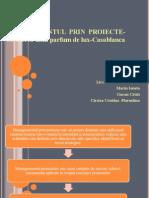 Managementul Prin Proiecte-refacut