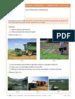 A Agricultura e as Pescas