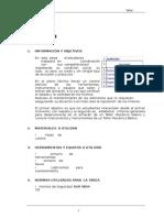 Informe Completo de Almacen