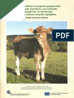 Természetvédelmi szempontú gyepkezelés és a kárpáti borzderes szarvasmarha