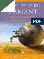 Sandra Ingerman - LEAC PENTRU PAMANT.pdf