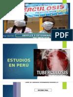 Presentación Anyplex Tbc-mdr-xdr 2015