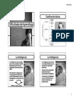 010 - Dificultades del Aprendizaje.pdf