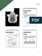 008 - neurociencia.pdf