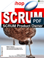 SCRUM Product Owner v3