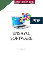 Ensayo sobre el software
