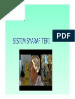 Sist Syaraf Tepi