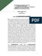 Trabajo Práctico Microeconomía