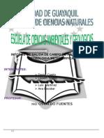 Informe de Campo Petrologia Metamorfica (4)
