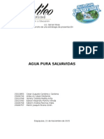Proyecto - Salvavidas S.a Final