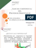 2 Presentacion de Perfiles de Competencia
