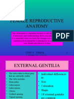 Female Reproductive Anatomy.ppt
