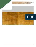 Papyrus Ambras