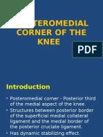 Posteromedian corner knee MRI