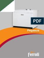 Pegasus Ferroli