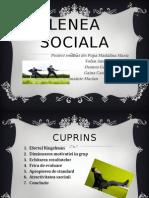 LENEA SOCIALA