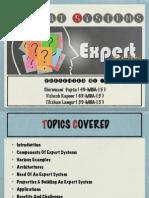 Expert System Presentation