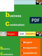 Merger and Acquizitions