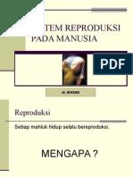 Organ_Reproduksi_Manusia.ppt