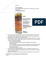 kimia ling