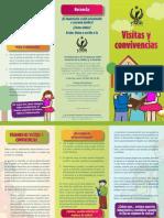 trip_visitasConvivencias.pdf