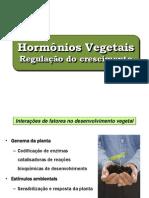 Hormonios vegetais