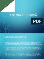 57069380 Anemia Feriprivă