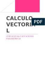 Solucionario Calculo Vectorial.