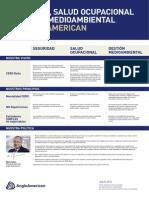 Política Integrada AA 2014 Español