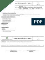 210101009_1 NORMA DE COMPETENCIA EN LOGÍSTICA