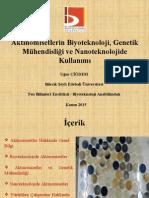 Aktinomisetlerin Biyoteknoloji, Genetik Mühendisliği Ve Nanoteknolojide Kullanımı