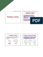 Teoria de los acidoos Nucleicos