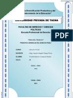 principios funfdamentales del derecho penal.doc