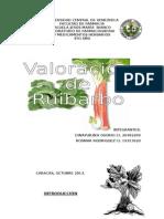 Ruibarbo Reporte Final