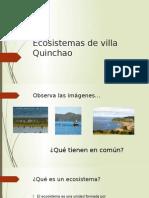 Ecosisteadmas de Villa Quinchao