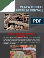 Biofilm y Respuesta Inmune