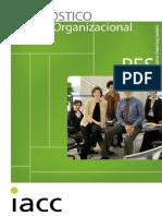 01_diagnostico_organizacional.pdf