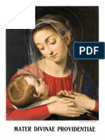 Madre della Divina Providenza