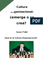 Cultura Organizativa Girona2012