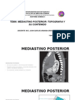 MEDIASTINO POSTERIOR15.pptx