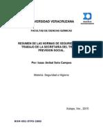 RESUMEN DE LAS NORMAS DE SEGURIDAD EN EL TRABAJO DE LA SECRETARIA DEL TRABAJO  PREVISIÓN SOCIAL.