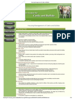 Housing Management of Cattle and Buffalo