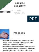 polidaktili