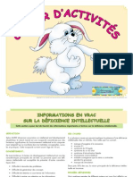 Cahier Activites Didier Lapin