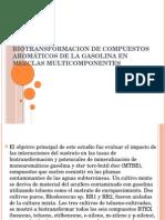 Metabolismo Aeróbico de Compuestos Aromáticos Gasolina