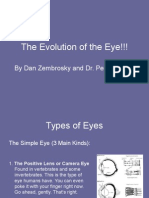 DanEvolution of the Eye