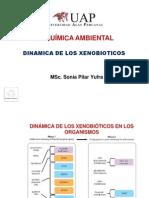 Bqma (Dinamica de Xenobioticos)